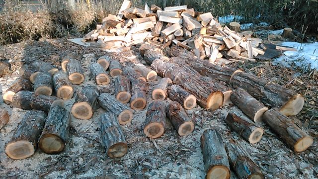 Repetition of firewood fraction